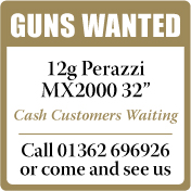 Guns Wanted Perazzi MX2000
